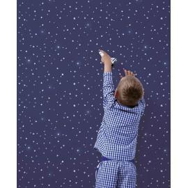 Papier peint bleu nuit et étoiles Lilipinso