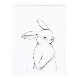 Affiche encadrée petit lapin Lilipinso