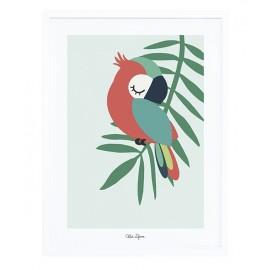Affiche avec cadre perroquet vert Lilipinso