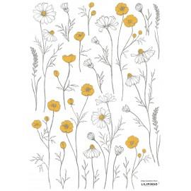 Stickers fleurs de camomille Lilipinso
