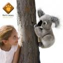 Peluche Kolette le Koala Plush and Company