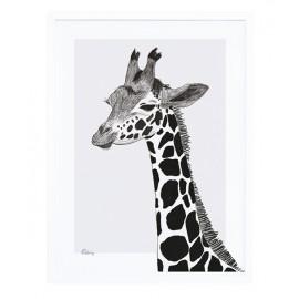 Affiche encadrée la girafe Lilipinso