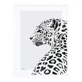 Affiche encadrée léopard Lilipinso