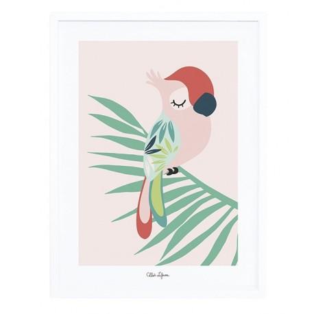 Affiche avec cadre perroquet rose Lilipinso