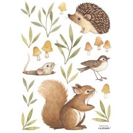 Stickers animaux, écureuil, hérisson Lilipinso