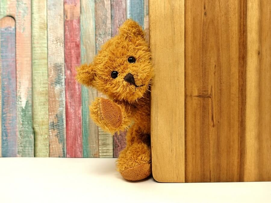 image petit ours