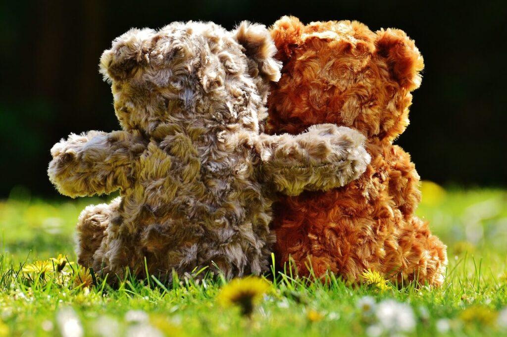 photo de peuches ours